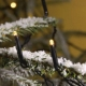 Micro-LED-Kette3613-110 von Konstsmide
