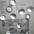 10x Ersatzkugeln zu Foscarini Caboche klar transparent